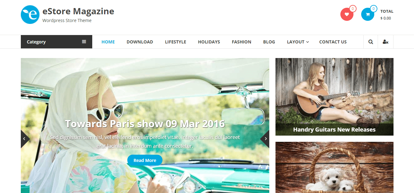 estore wordpress theme
