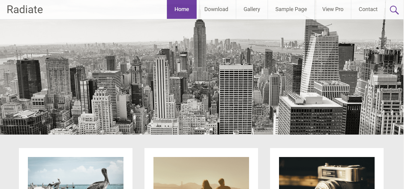 radiate wordpress themes